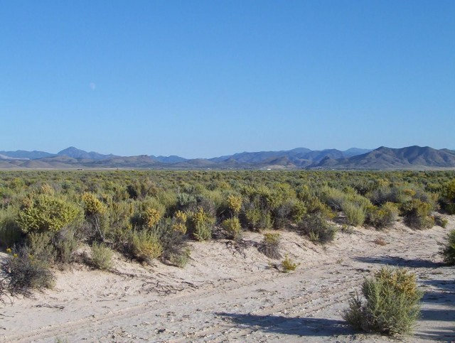 1.98 Acres Just 2.5 Hours North of Las Vegas. Come and Relax.