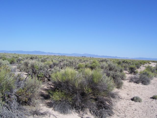 2.07 Acres of Quiet Land Just 2.5 Hours North of Las Vegas. Get Away Today!