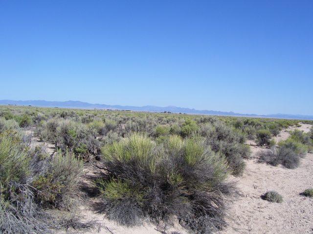 2.07 Acres of Quiet Land Just 2.5 Hours North of Las Vegas. Get Away Today!