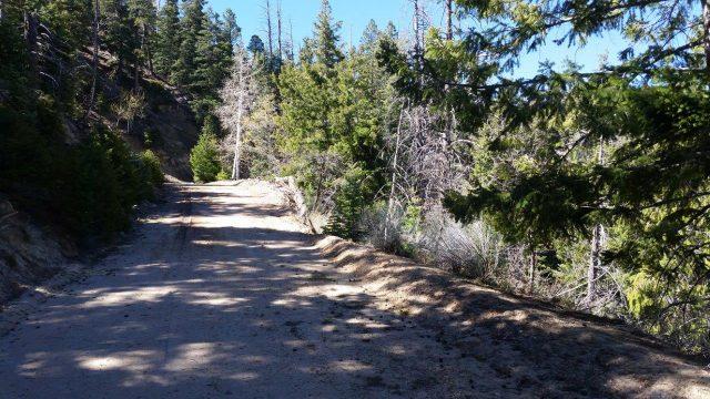 Great Cabin Lot in Bryce Woodland Estates Near Bryce Canyon