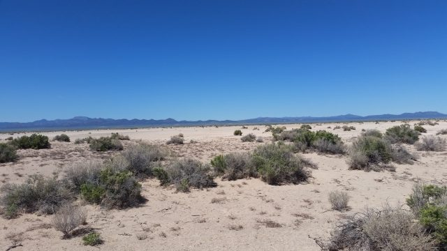 Large 5 Acre Lot for Sale in Iron County, Utah
