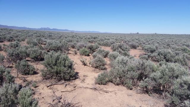 Large 4.54 Acre Property in Quiet Valley in Iron County, Utah