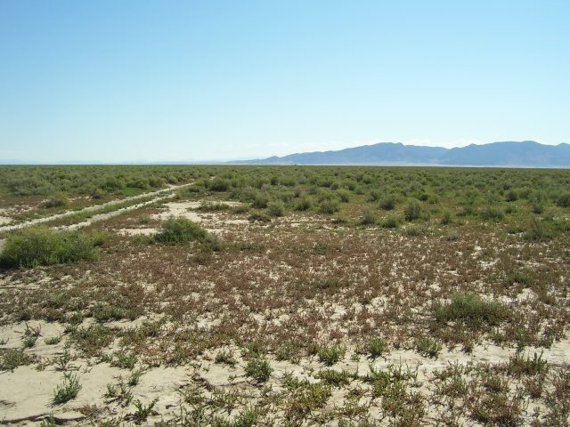 Get Outside and Away on Your Own 2.27 Acre Play Land Just 60 Miles North of St George, UT