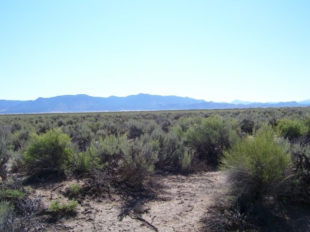 Get Out of the City. 2.24 Acres 2.5 Hours North of Las Vegas.