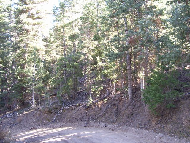 Kane County, Utah Land For Sale – 1.45 Acres – 26-6-21